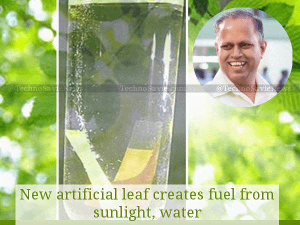 Indian scientists developed Artificial leaf to create hydrogen fuel from sunlight